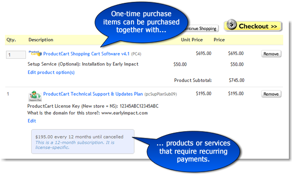 Selling one-time purchase items and subscriptions at the same time